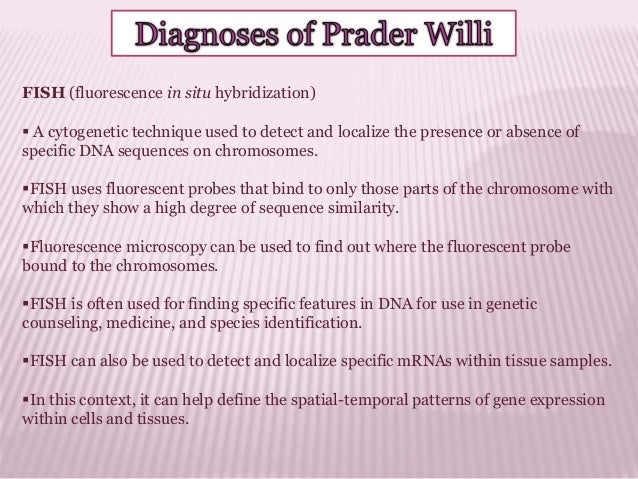 prader willi syndrome Prader-willi syndrome (pws) is the most common syndromic form of obesity the syndrome is caused by absence of expression of the paternally active genes on the.