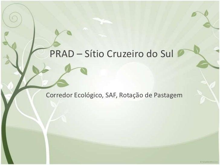 PRAD – Sítio Cruzeiro do SulCorredor Ecológico, SAF, Rotação de Pastagem