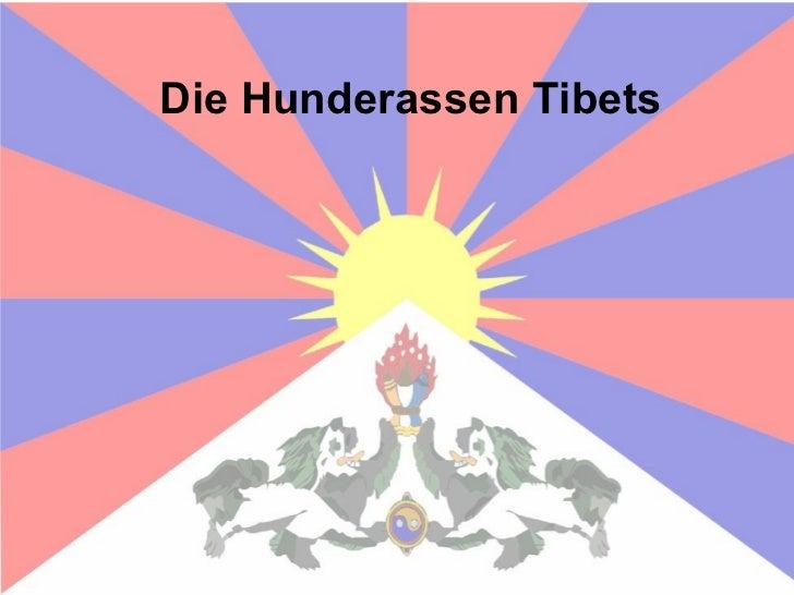 Die Hunderassen Tibets