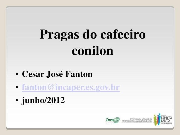 Pragas do cafeeiro           conilon• Cesar José Fanton• fanton@incaper.es.gov.br• junho/2012