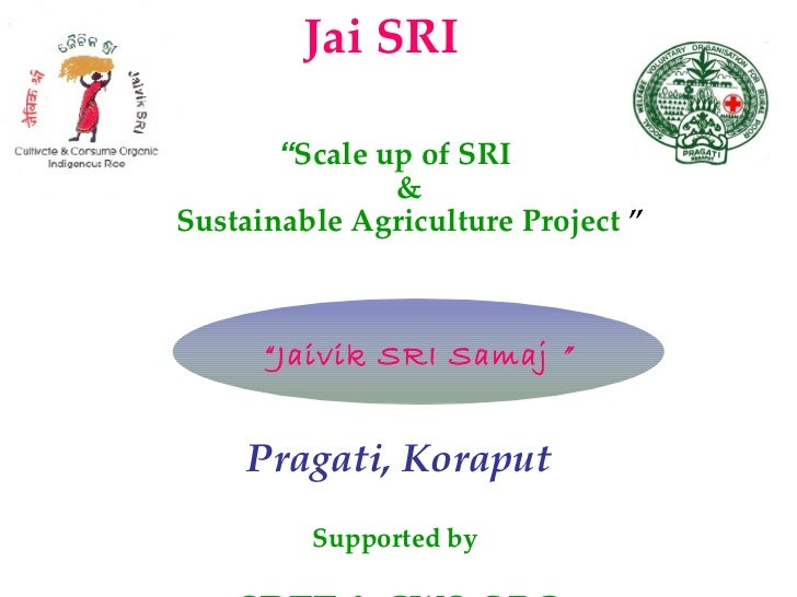 "<ul><li>"" Scale up of SRI  &  Sustainable Agriculture Project   ""   </li></ul><ul><li>Pragati, Koraput </li></ul><ul><li>S..."