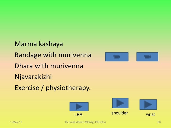 1-May-11<br />Dr.Jalaludheen.MS(Ay),PhD(Ay)<br />41<br />The gate control theory of pain<br />Nerve fibers are large bundl...