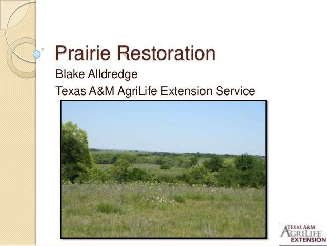 Prairie RestorationBlake AlldredgeTexas A&M AgriLife Extension Service