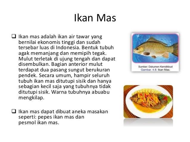 Pengolahan Ikan Dan Daging Prakarya 9 B Smp Negeri 2 Brebes