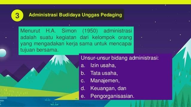 Peluang Usaha Budidaya Unggas Pedaging