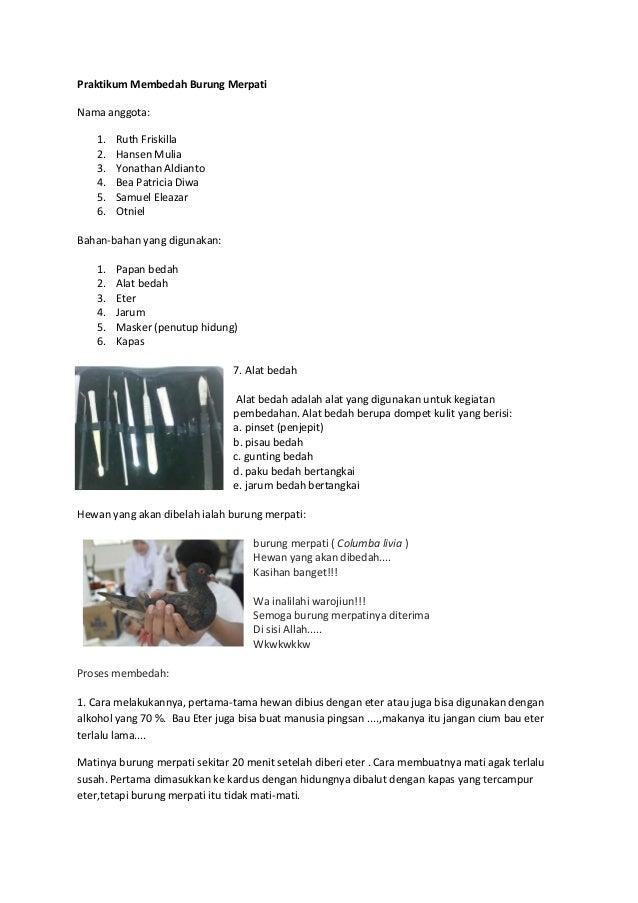Praktikum Membedah Burung MerpatiNama anggota:   1.   Ruth Friskilla   2.   Hansen Mulia   3.   Yonathan Aldianto   4.   B...