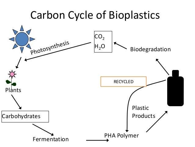 bioplastics from microorganisms using plants and Dossier – bioplastics as food contact materials april 2014 birgit geueke 1 definition of bioplastics the two main groups of bioplastics.