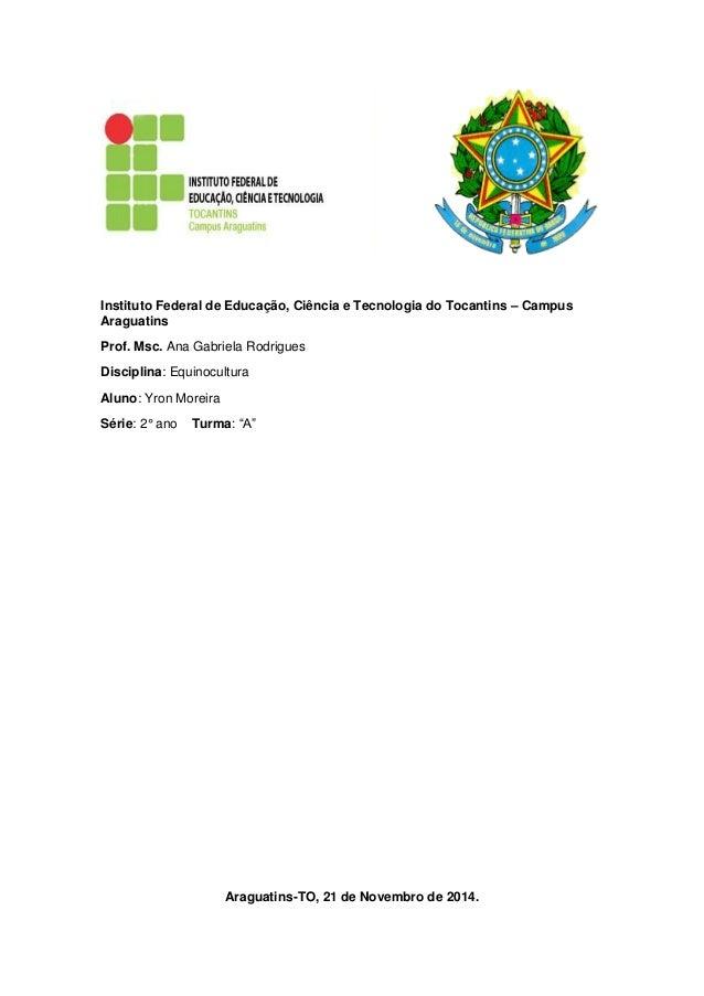 Instituto Federal de Educação, Ciência e Tecnologia do Tocantins – Campus Araguatins  Prof. Msc. Ana Gabriela Rodrigues  D...