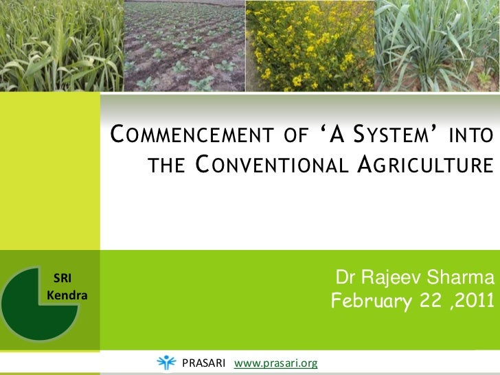 C OMMENCEMENT OF 'A S YSTEM ' INTO            THE C ONVENTIONAL A GRICULTURE SRI                                     Dr Ra...