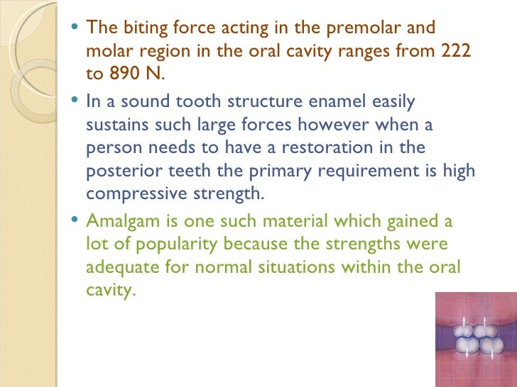 <ul><li>The biting force acting in the premolar and molar region in the oral cavity ranges from 222 to 890 N. </li></ul><u...
