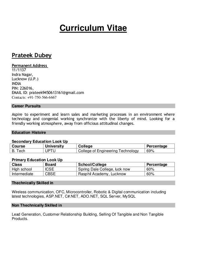 sale promoter resume