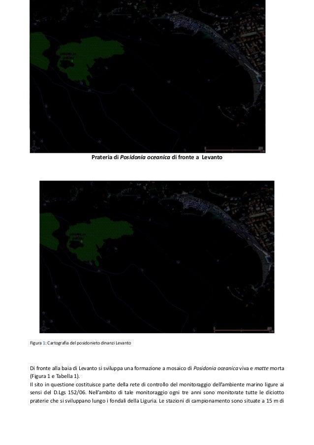 Prateria di Posidonia oceanica di fronte a Levanto Figura 1: Cartografia del posidonieto dinanzi Levanto Di fronte alla ba...