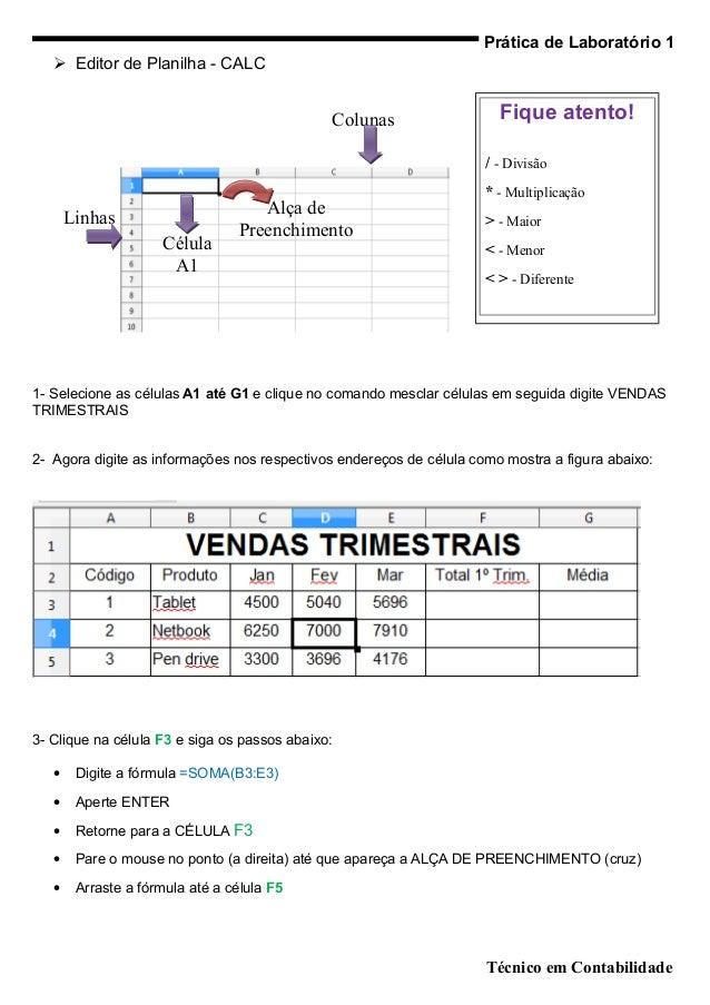 Prática de Laboratório 1    Editor de Planilha - CALC                                              Colunas               ...