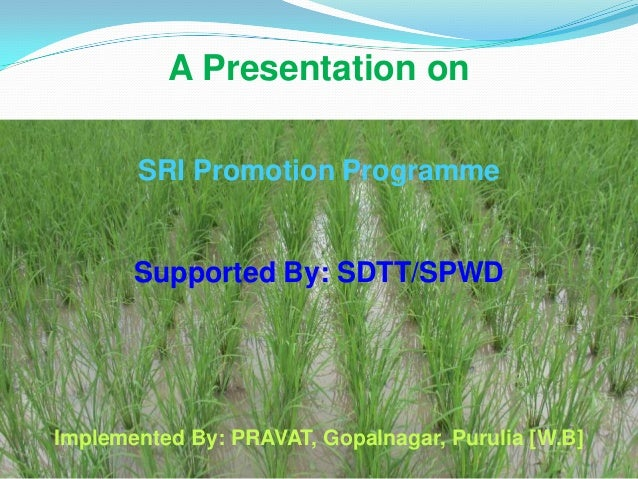 A Presentation onSRI Promotion ProgrammeSupported By: SDTT/SPWDImplemented By: PRAVAT, Gopalnagar, Purulia [W.B]