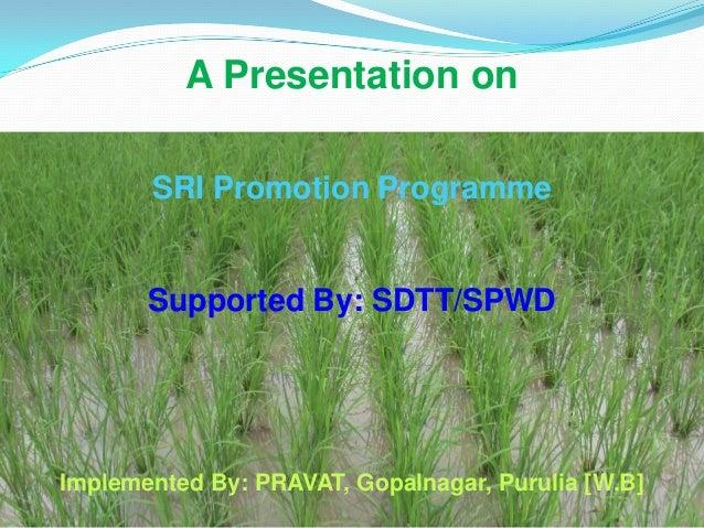 A Presentation onSRI Promotion ProgrammeSupported By: SDTT/SPWDImplemented By: PRAVAT, Gopalnagar, Purulia [W.B]