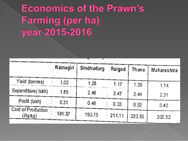 Prawn Production In Maharashtra
