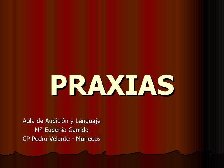 PRAXIAS Aula de Audición y Lenguaje Mª Eugenia Garrido CP Pedro Velarde - Muriedas