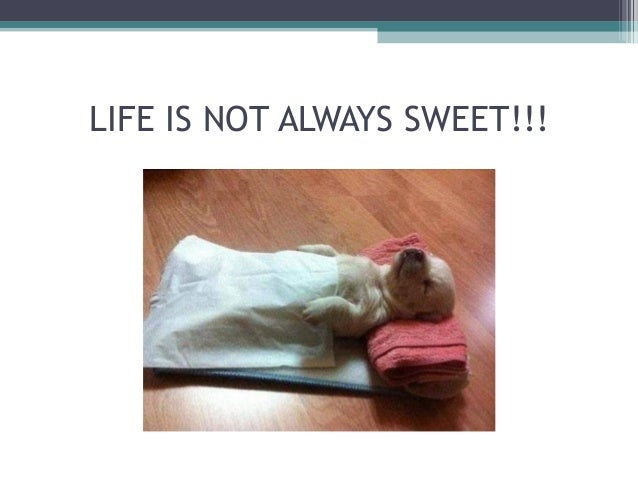 LIFE IS NOT ALWAYS SWEET!!!