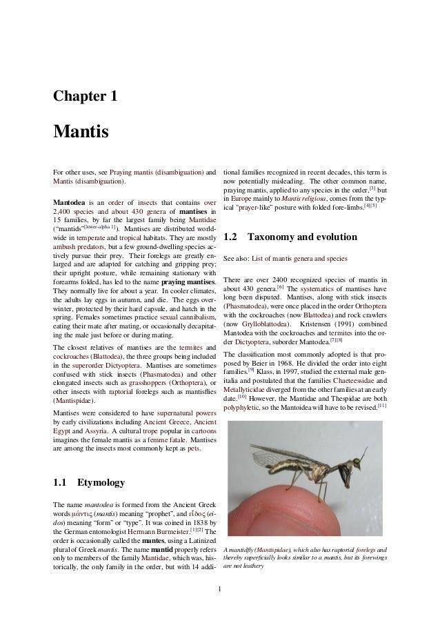 Pray Mantis Symbology Of Gods Prophets A Creation Symbol Of Gods Prop