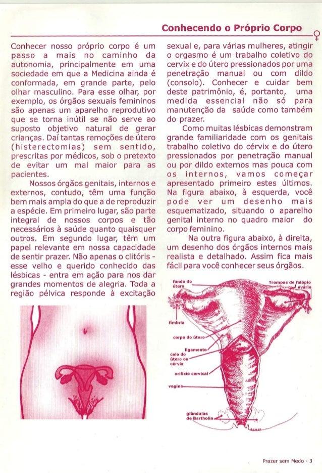 Prazer sem medo (sobre saúde e sexualidade para mulheres lésbicas) Slide 3