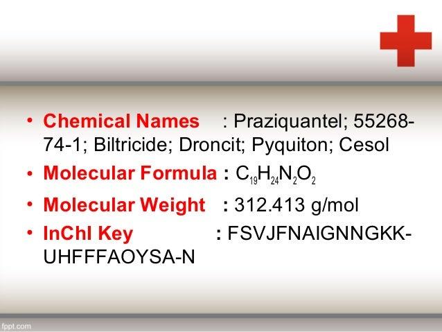Praziquantel manufacturers