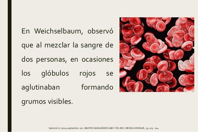 Práctica 5. GRUPOS SANGUÍNEOS  Slide 3