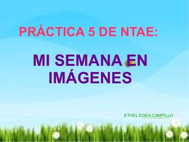 PRÁCTICA 5 DE NTAE:PRÁCTICA 5 DE NTAE: MI SEMANA ENMI SEMANA EN IMÁGENESIMÁGENES ETHEL EGEA CAMPILLO