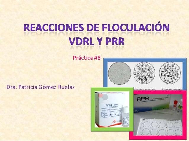 Dra. Patricia Gómez Ruelas Práctica #8