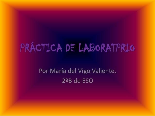 PRÁCTICA DE LABORATPRIO Por María del Vigo Valiente. 2ºB de ESO