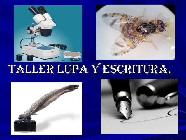TALLER LUPA Y ESCRITURA.TALLER LUPA Y ESCRITURA.