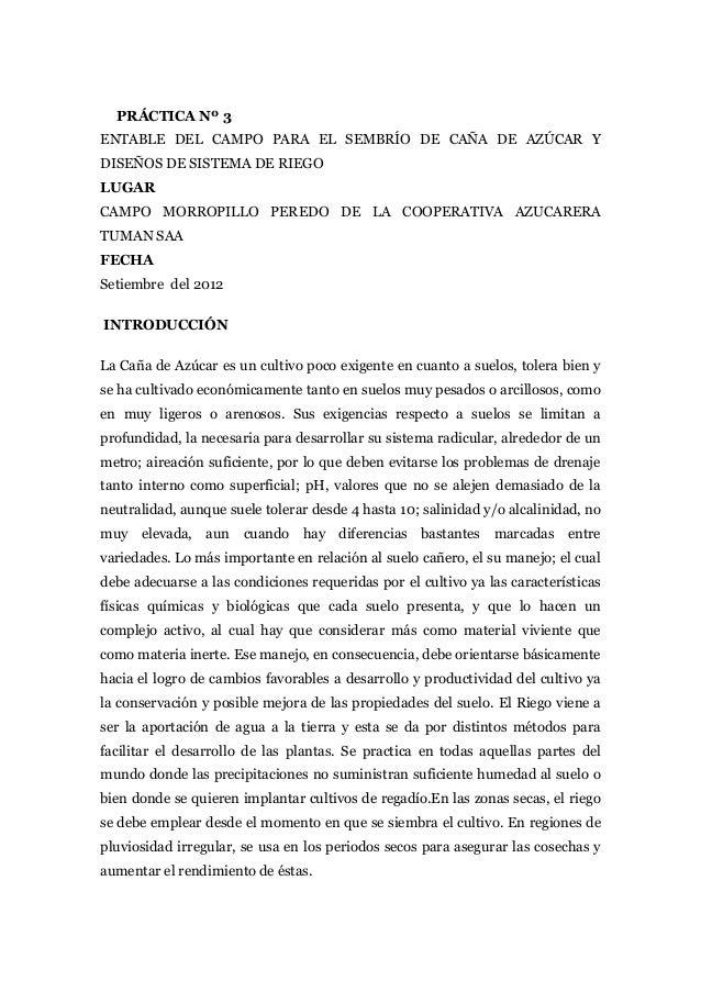 PRÁCTICA Nº 3ENTABLE DEL CAMPO PARA EL SEMBRÍO DE CAÑA DE AZÚCAR YDISEÑOS DE SISTEMA DE RIEGOLUGARCAMPO MORROPILLO PEREDO ...