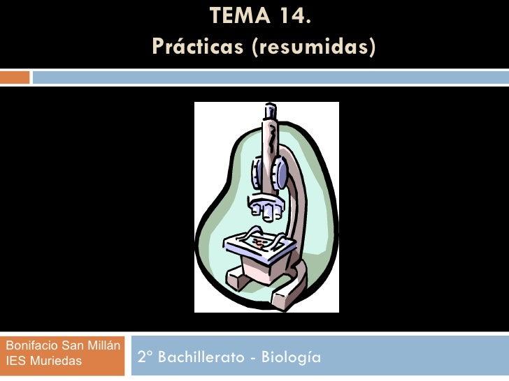 TEMA 14.                         Prácticas (resumidas)Bonifacio San MillánIES Muriedas           2º Bachillerato - Biología
