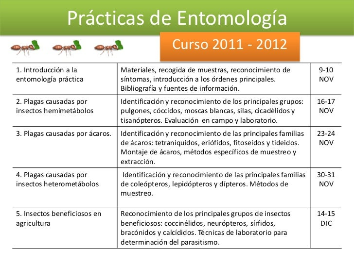 Prácticas de Entomología                                                 Curso 2011 - 20121. Introducción a la            ...