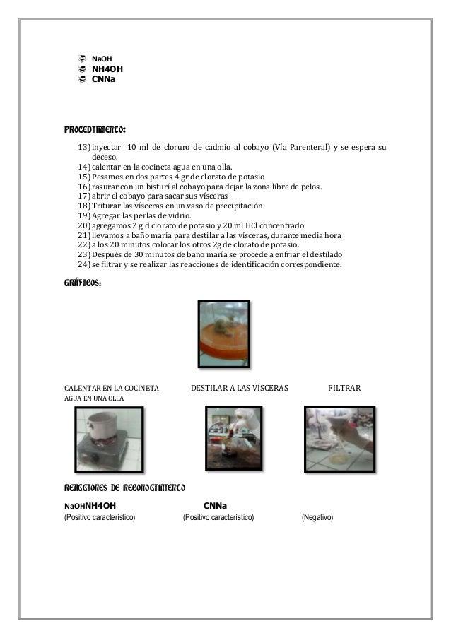  NaOH  NH4OH  CNNa  PROCEDIMIENTO: 13) inyectar 10 ml de cloruro de cadmio al cobayo (Vía Parenteral) y se espera su de...