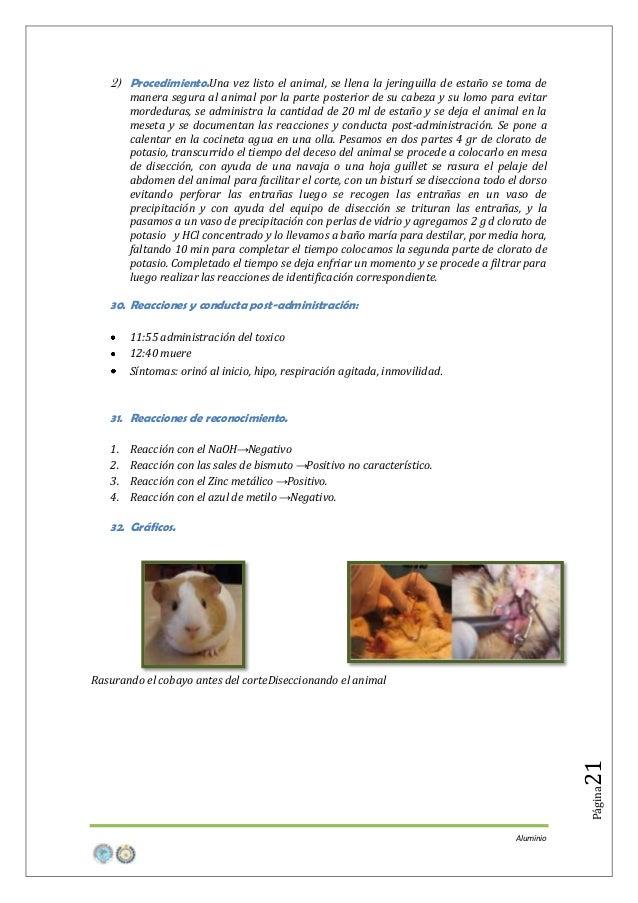 2) Procedimiento.Una vez listo el animal, se llena la jeringuilla de estaño se toma de manera segura al animal por la part...