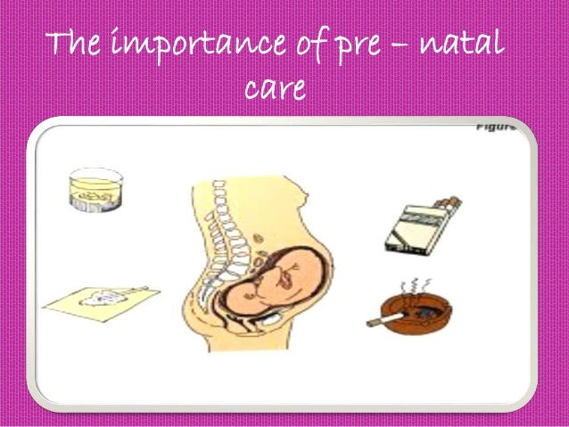 The importance of pre – natal care