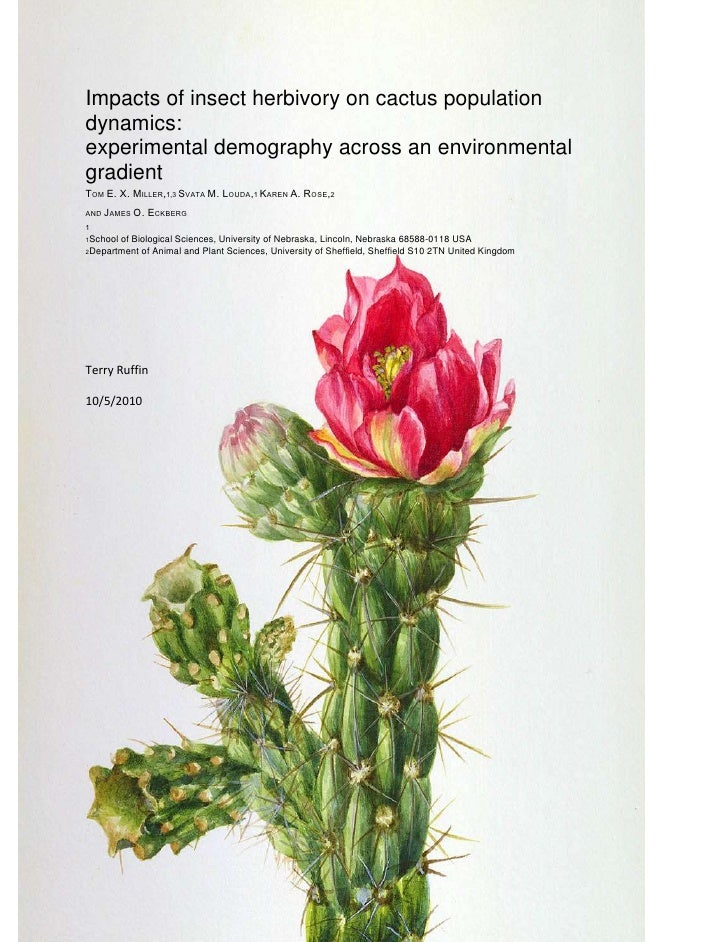 -714375-933450Impacts of insect herbivory on cactus population dynamics:<br />experimental demography across an environmen...