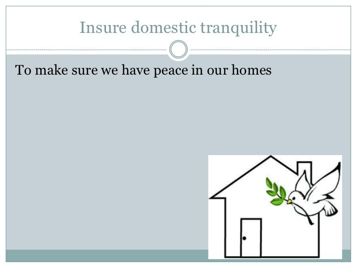 insure domestic tranquility the preamble The phrase, 'insure domestic tranquility', appears in the preamble, and simply put, it means to ensure that peace, calm, and law and order coexist in the country.