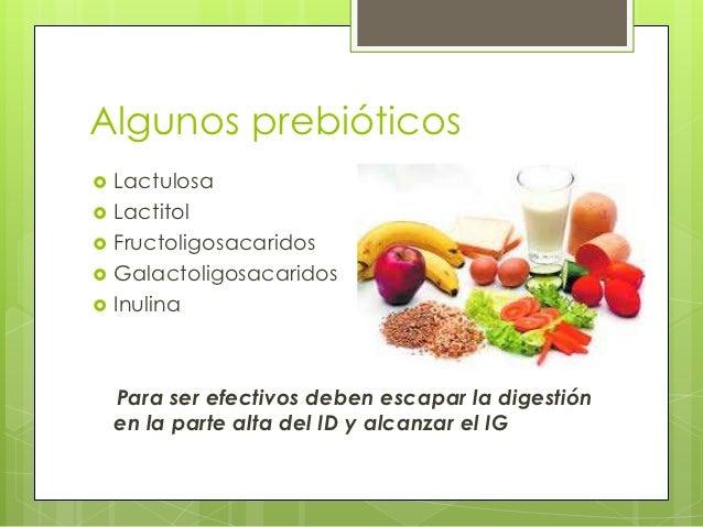 Prebi ticos probioticos y simbioticos - Alimentos con probioticos y prebioticos ...
