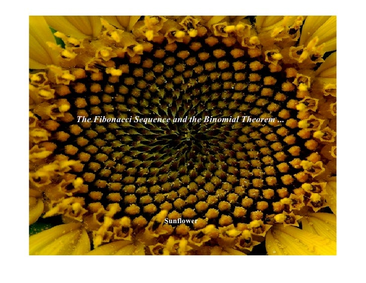 The Fibonacci Sequence and the Binomial Theorem ...                          Sunflower