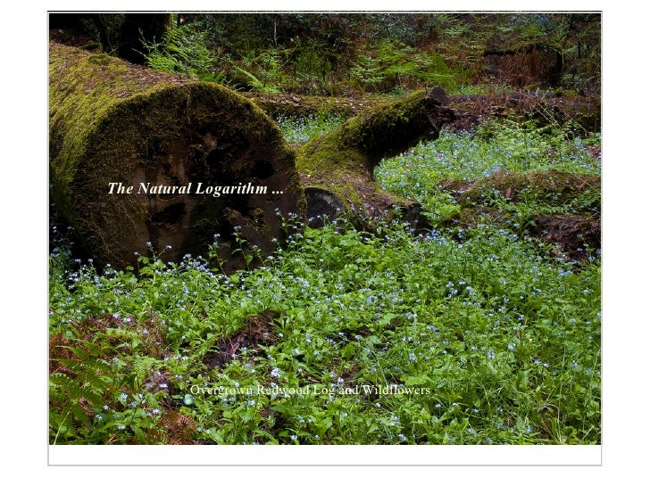 The Natural Logarithm ...                Overgrown Redwood Log and Wildflowers