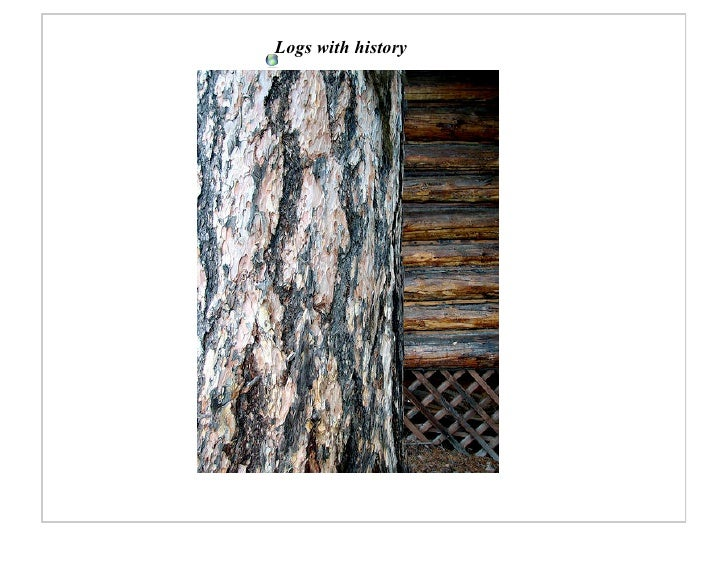 Logs with history