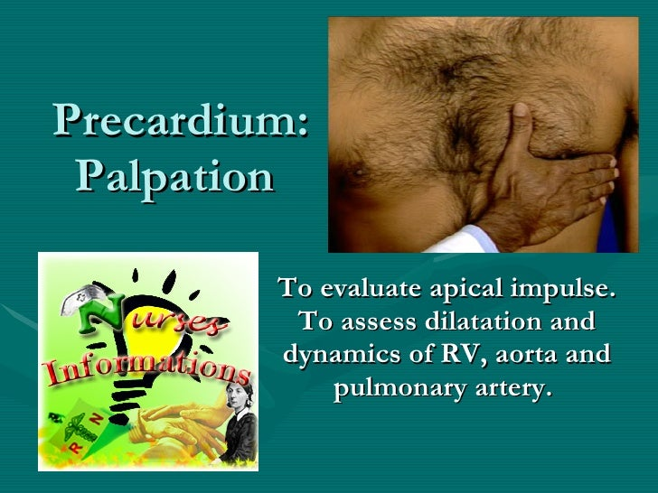 Precardium: Palpation  To evaluate apical impulse. To assess dilatation and dynamics of RV, aorta and pulmonary artery.