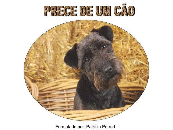 PRECE DE UM CÃO Formatado por: Patrícia Perrud