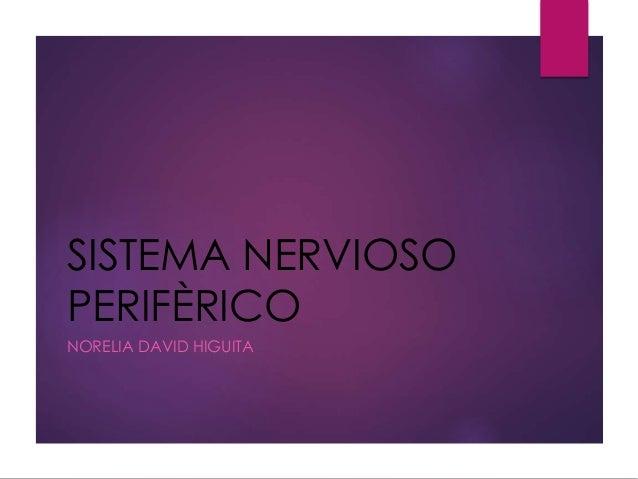 SISTEMA NERVIOSO PERIFÈRICO NORELIA DAVID HIGUITA