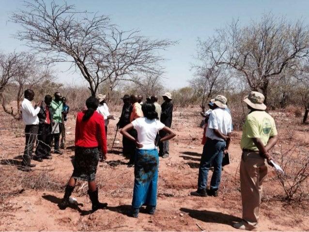 Zimbabwe Hub Training RSA Facilitators