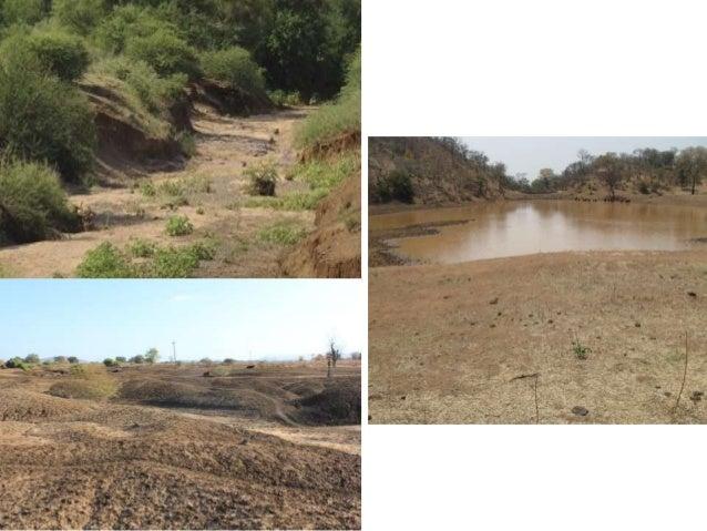 11/4/2015 6 Restoring Grasslands Using Livestock- for water security