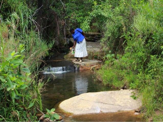 "Precious Phiri: ""Community Grazing for Community Abundance"""