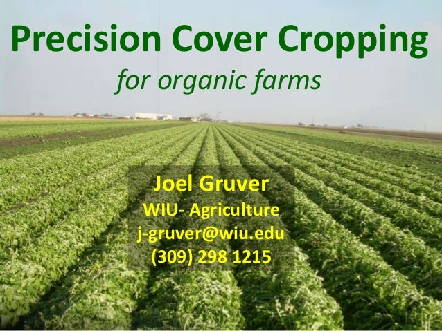 Precision Cover Cropping for organic farms  Joel Gruver WIU- Agriculture j-gruver@wiu.edu (309) 298 1215