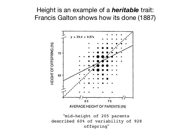 """Height is an example of a heritable trait:  Francis Galton shows how its done (1887) """"mid-height of 205 parents described ..."""